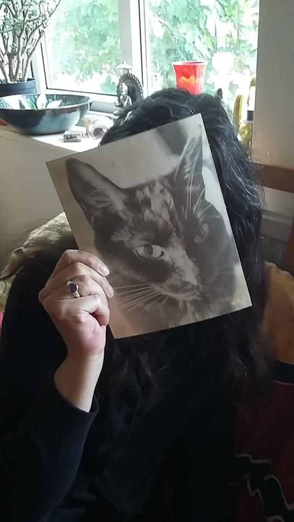 Cat Woman by Toby Ilsley 2016